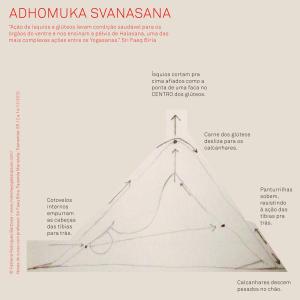Adhomuka Svanasana